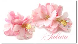 <img class='new_mark_img1' src='https://img.shop-pro.jp/img/new/icons55.gif' style='border:none;display:inline;margin:0px;padding:0px;width:auto;' />Sakura*3D