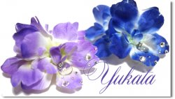 Yukata*3D