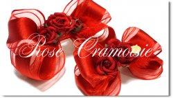 Rose Cramoisie