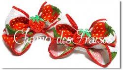 Champ des fraises