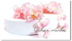 Sakura*mankai