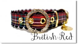 British red  bb◆ベルト