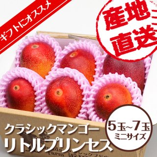 クラシックマンゴー リトルプリンセス 5玉〜7玉
