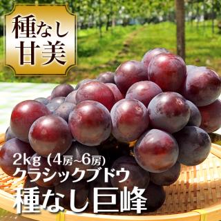 クラシックブドウ 種なし巨峰 2キロ 4〜6房