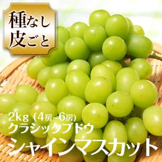 クラシックブドウ シャインマスカット 2キロ 4〜6房 数量限定!