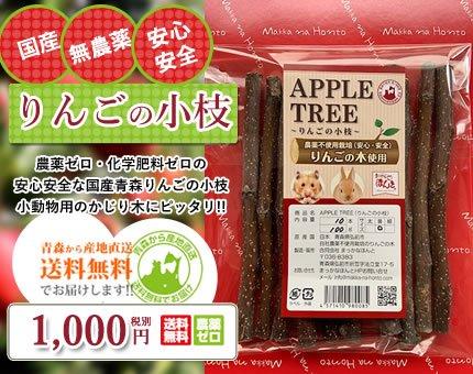 りんごの小枝 [農薬不使用栽培で安心安全] 数量限定販売ですのでなくなり次第終了です。お求めの方はお急ぎください!