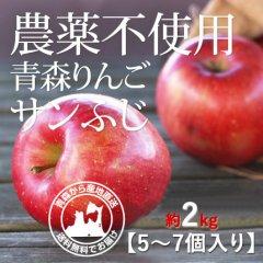 2020年産 青森県産 農薬不使用りんご「サンふじ」【約2kg 5〜7個入り】12月1日〜ご発送予定でございます。を産地直送で通信販売