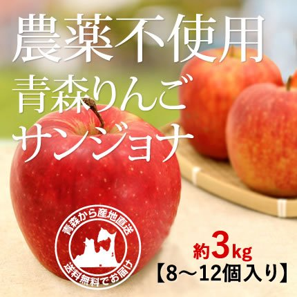 2021年産 青森県産 農薬不使用りんご 「サンジョナ(ジョナゴールド)」【約3kg 8〜12個入り】10月下旬〜ご発送予定でございます。 数量限定販売ですのでなくなり次第終了です。お求めの方はお急ぎください!