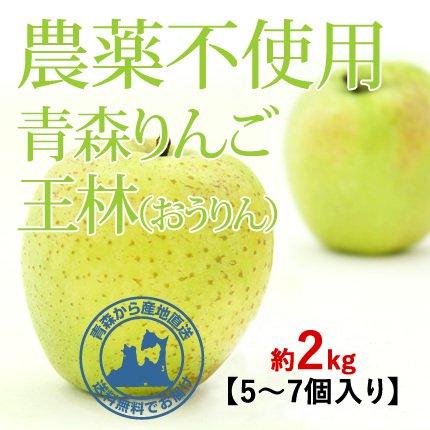 2021年産 青森県産 農薬不使用りんご 「王林(おうりん)」【約2kg 5〜7個入り】11月中旬〜ご発送予定でございます。 数量限定販売ですのでなくなり次第終了です。お求めの方はお急ぎください!