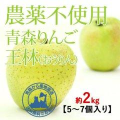 2020年産 青森県産 農薬不使用りんご 「王林(おうりん)」【約2kg 5〜7個入り】11月中旬〜ご発送予定でございます。