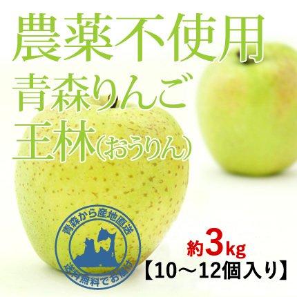 2021年産 青森県産 農薬不使用りんご 「王林(おうりん)」【約3kg 9〜12個入り】11月中旬〜ご発送予定でございます。 数量限定販売ですのでなくなり次第終了です。お求めの方はお急ぎください!