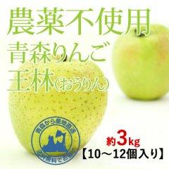 2020年産 青森県産 農薬不使用りんご 「王林(おうりん)」【約3kg 9〜12個入り】11月中旬〜ご発送予定でございます。を産地直送で通信販売