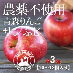 2020年産 青森県産 農薬不使用りんご「サンふじ」【約3kg 9〜12個入り】12月1日〜ご発送予定でございます。を産地直送で通信販売