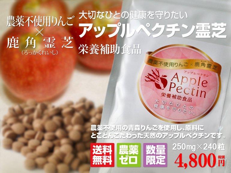 4,800円(税込5,184円)
