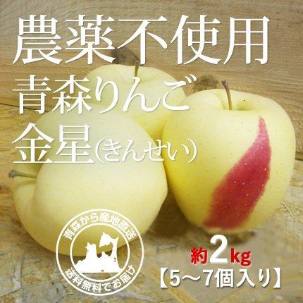 2021年産 青森県産 農薬不使用りんご 「金星(きんせい)」【約2kg 5〜7個入り】12月中旬〜ご発送予定でございます。 数量限定販売ですのでなくなり次第終了です。お求めの方はお急ぎください!