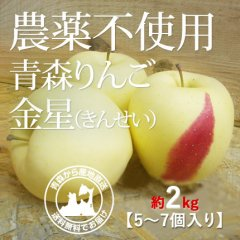 2020年産 青森県産 農薬不使用りんご 「金星(きんせい)」【約2kg 5〜7個入り】12月中旬〜ご発送予定でございます。を産地直送で通信販売