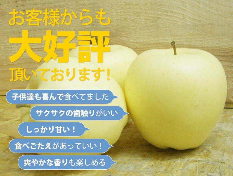 8,000円(税込8,640円)