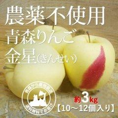 2020年産 青森県産 農薬不使用りんご 「金星(きんせい)」【約3kg 8〜12個入り】12月中旬〜ご発送予定でございます。を産地直送で通信販売
