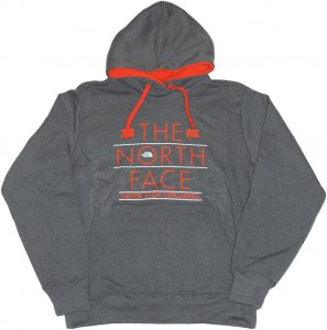 THE NORTH FACE プリントパーカー -グレー