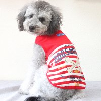 ジーニートップス レッド lovabledog
