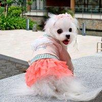 ウールホーリードレス ピンク ABBYABBY