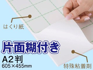 片面糊付きスチレンボード A2判(605×455mm) 5mm厚 100枚セット