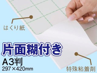 片面糊付きスチレンボード A3判(297×420mm) 3.5mm厚 220枚セット