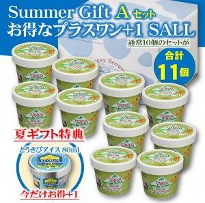 2020夏ギフト アイスAセット(冷凍商品)