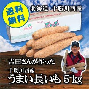 吉田さんが作った十勝川西産うまい長いも5�・1箱【常温】