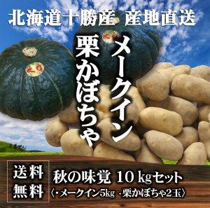 【送料無料】秋の味覚 北海道十勝産 栗かぼちゃ2玉・メークイン5�セット
