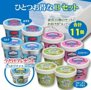 今ならお得がついてくる アイスクリーム10個Bセット(冷凍商品)