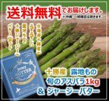 【送料無料】 十勝の春の味覚♪ 2020十勝川西〈露地もの〉グリーンアスパラ1.5kg(L、2Lサイズ込)