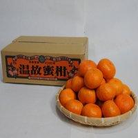 温故蜜柑5.5kg S
