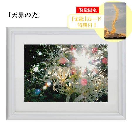 秋元隆良 奇跡の写真 2L版「天界の光」【金龍カード特典付!】代引き不可