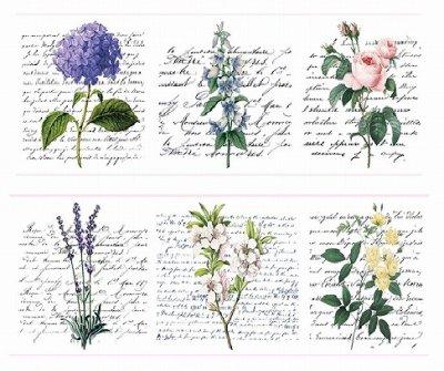 海外製 マスキングテープ -Flower and Script (大)