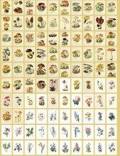 【訳あり】 ヴィンテージデザイン素材本(メモ帳)-きのこ 100枚