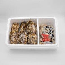 広島牡蠣殻つき(10個)・むきみ(500g)セット