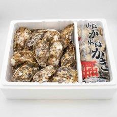 広島牡蠣殻つき(20個)・むきみ(1.5kg)セット