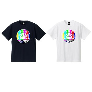 【ANDSUNS】COLOR BARS TEE