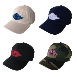 【ANDSUNS】WING SUNS 6PANELS<img class='new_mark_img2' src='https://img.shop-pro.jp/img/new/icons5.gif' style='border:none;display:inline;margin:0px;padding:0px;width:auto;' />