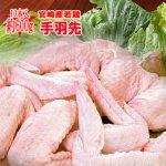 ■たっぷり■宮崎県産★若鶏手羽先 10本(約600g)【冷蔵】