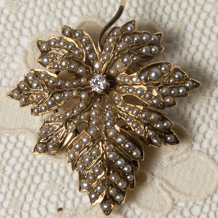 シードパール ダイヤ  金  メープルリーフブローチ エドワーディアン 1900年頃