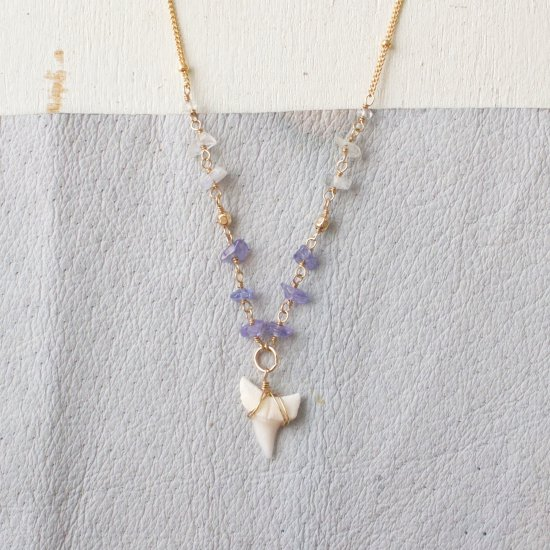 〈14KGF-N-28〉Shark tooth × tanzanite×Moon stone