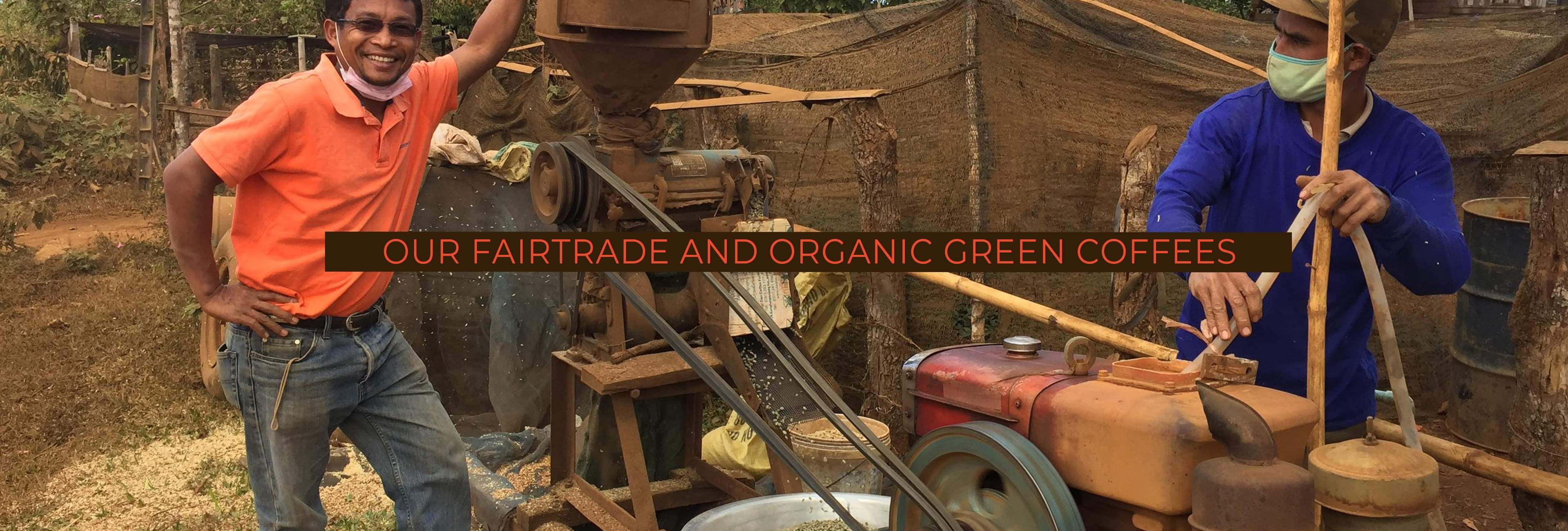 Our Fair trade and Organic green coffee