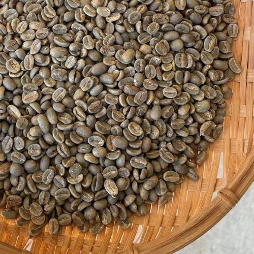 <2020年 新豆>★無農薬コーヒー生豆★ 東ティモール コカマウ 5kg