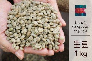 <b>★無農薬コーヒー生豆★ ラオス SAMURAI カティモール ハニー 1kg</b>