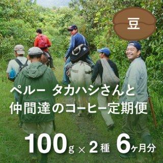 <b>ペルー・高橋さんのコーヒー定期便 【Liteコース】 毎月100g×2種類  6か月分(豆のまま)*特典として豆乃木オリジナルキャニスター付 </td></b>