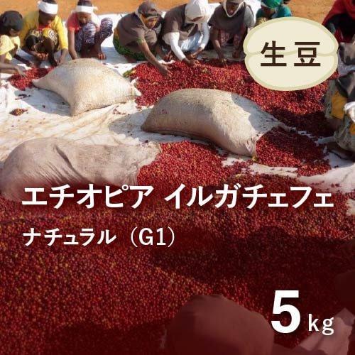<img class='new_mark_img1' src='https://img.shop-pro.jp/img/new/icons14.gif' style='border:none;display:inline;margin:0px;padding:0px;width:auto;' />★無農薬コーヒー生豆★ エチオピア イルガチェフェ ナチュラルG1 (アリーチャ WS)5kg