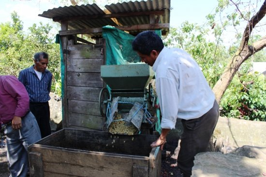 ★フェアトレード&無農薬コーヒー★メキシコ マヤビニック 中煎り 200g(豆のまま)