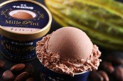 ご当地アイス 商品一覧 【全国】 那須千本松牧場 ミレピーニ チョコレート 【栃木県 】